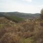 Изглед от пътя към в.Копран